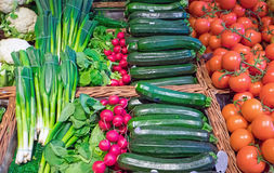 Zucchini, tomatoes and pennycress Royalty Free Stock Photography