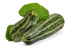 Zucchini. Two fresh striped zucchini with leaves on white. Cocozelle Summer Squash (Cucurbita pepo) have excellent flavor for all regular zucchini uses stock image