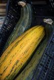 Zucchini in un mercato del canestro Immagini Stock