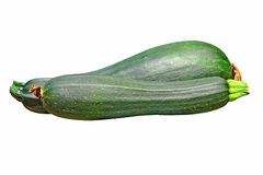 Zucchini vegetable taken closeup.Isolated. Royalty Free Stock Photos