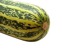 Zucchini vegetal Imagens de Stock