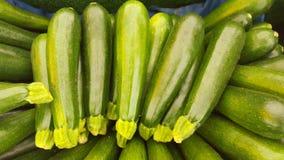 Zucchini verde Fotografie Stock Libere da Diritti