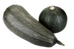 Zucchini verde due Immagini Stock Libere da Diritti