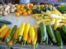 Zucchini verde e giallo Immagini Stock Libere da Diritti