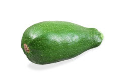 Zucchini on white background Stock Images
