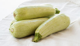 Zucchini on white background Royalty Free Stock Photo