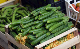 Zucchini in a wooden box Stock Image