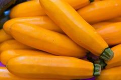 Zucchini. Yellow Zucchini Squash from thailand Stock Photos