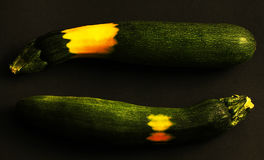 Zucchini with yellow sunburn Royalty Free Stock Images