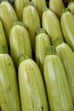 Zucchini zielony tło Obrazy Royalty Free