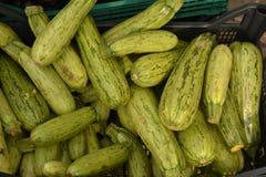 Zucchini Royalty Free Stock Image