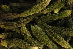 Zucchinibeschaffenheit Lizenzfreie Stockbilder