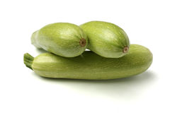 zucchinier Royaltyfri Fotografi