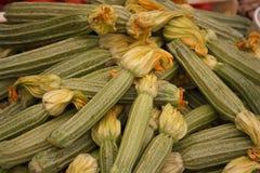 zucchinis Fotografía de archivo libre de regalías