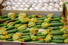 Zucchinis with flowers in a tray stock photo