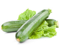 Zucchinizucchini Arkivbild