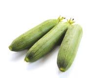 Zucchinizucchini som isoleras på vit Royaltyfria Bilder