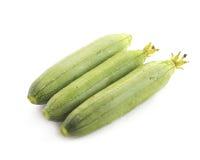 Zucchinizucchini som isoleras på vit Royaltyfri Fotografi
