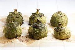Zucchinizucchinier rundar den välfyllda kocken Arkivfoto