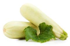 Zucchino Fotografia Stock