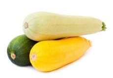 Zucchino della verdura fresca Immagine Stock Libera da Diritti
