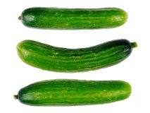 Zuchinni Stock Images