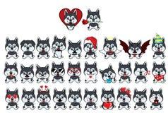 Zuchtsitzen Hundalaskisches Kli Kai Großer Satz von 31 verschiedenen kleinen Hunden lizenzfreie abbildung