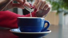 Zucker wird dem Becher hinzugefügt stock footage