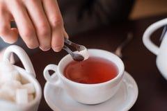 Zucker wird in Tee geworfen Stockbilder