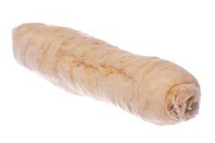 Zuckerginseng-Wurzel-Makro getrennt stockbild