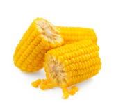 Zuckermaiskämme lokalisiert auf Weiß zuckermais Lizenzfreies Stockfoto