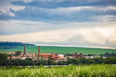 Zuckerrohr-Fabrikindustrie - Sao Paulo, Brasilien lizenzfreies stockbild