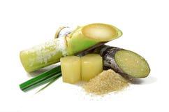 Zuckerrohr lokalisiert auf weißem Hintergrund Stockbild