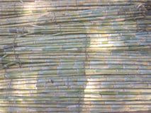 Zuckerrohrbündel während der heißen Sommersaison stockfotografie