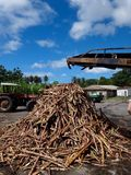Zuckerrohrmühle Lizenzfreie Stockbilder