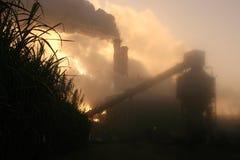 Zuckerrohrmühle im nebelhaften Sonnenaufgang Stockbilder