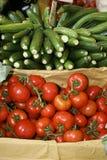 Zucs e tomates Imagens de Stock