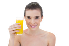 Zufriedenes natürliches braunes behaartes Modell, das ein Glas Orangensaft hält Lizenzfreies Stockfoto