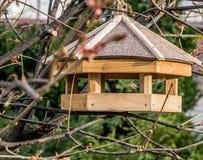 Zufuhr für Vögel auf der Niederlassung lizenzfreie stockbilder