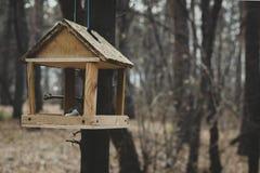 Zufuhren für Vögel stockfotografie