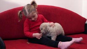 Zufuhrhund des kleinen Mädchens stock video