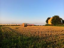 Zug auf einem Gebiet Stockfoto