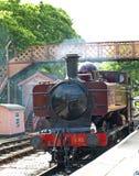 Zug an Buckfastleigh-Station Lizenzfreie Stockfotos