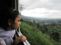 Zug in den Hochländern von Sri Lanka Lizenzfreies Stockbild