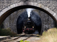 Zug, der den Tunnel herausnimmt Lizenzfreies Stockbild