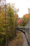 Zug, der durch die Adirondack-Herbstwildnis sich bewegt Lizenzfreies Stockbild