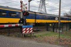 Zug, der einen Bahnübergang führt Stockfoto