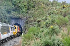 Zug, der einen Tunnel kommt Stockfoto