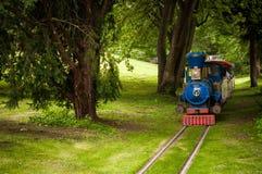 Zug im Wald Lizenzfreie Stockfotos
