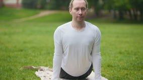 Zug von Yoga führt Übung für Flexibilität im Park durch stock video